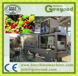 Vegetal de fruta que processa fazendo a máquina de estaca do vegetal de fruta da máquina