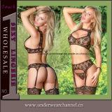 De hoogste Reeks van het Ondergoed van het Kant Shapewear van de Bustehouder van de Manier Quanlity Sexy (TFQQ1014)
