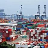20gp/40gp/40hc de Vracht van de container van Qingdao aan India