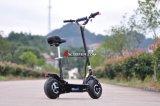 500W, 800W, 1000W 의 2 바퀴 성인 전기 스쿠터