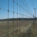 Clôture de bétail de haute sécurité / Ferme de prairie / Cerf / Cheval / Mouton