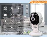 2MP 1080P Panorama IP-drahtlose Überwachungskamera (H100-A5)