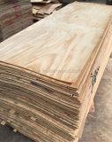 4.0X1220X2440mm 회전하는 커트 자연적인 Radiata 소나무 베니어