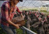 Rete metallica esagonale per il cestino di Gabion con il prezzo competitivo