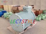 400VAC 60rpm 60kw 바람 터빈 발전기/영구 자석 발전기