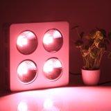 4*200W穂軸LEDは反射鏡デザインの軽く完全なスペクトルを育てる