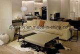 Sofà moderno del cuoio del tessuto del sofà dell'hotel di stile (D-75-F+E)
