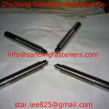 Stainless Steel Square Head Stud