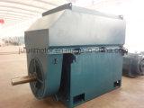 Motor asíncrono trifásico de alto voltaje grande/de tamaño mediano Yrkk5603-10-450kw del anillo colectando del rotor de herida