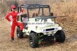 250cc ATV voor Landbouwbedrijf voor Volwassenen