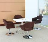 Elegant sich entspannen und Freizeit-Sofa-Stuhl (UL-LS110)