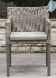 Rota al aire libre moderna/silla de mimbre (LN-2000W)