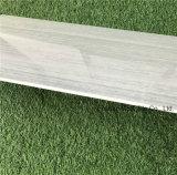 400X800mm는 사기그릇 얇은 도와 Jp40807를 나무 본다