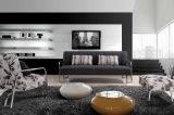 بسيطة أسلوب بناء [كم] أريكة يثبت مع [أتّومن]/دوّاسة [سترينلسّ] ساق