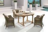 藤のセット(J6372)を食事する屋外のテラスの柳細工の家具の一定の庭セビリア/4季節
