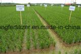 Heißes verkaufendüngemittel des stickstoff-Düngemittel-granuliertes Harnstoff-N46%