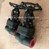 800lb/1500lb/2500lb a modifié la soupape à vanne de l'amorçage TNP de l'acier A105