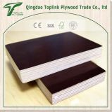 Wood Working Machine One Time Hot Press Film Faced Plywood