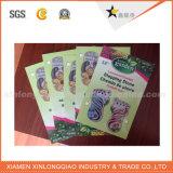 Promoción Impreso encargo de impresión Plegable Folleto / Folleto / Catálogo / folleto