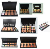 Privé Etiket Geen Embleem 12 Palet van de Make-up van de Camouflagestift van Kleuren het Kosmetische voor de Vrouwen van de Schoonheid Fg12
