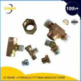 Schlauch-Endpass-Stücke 2016 Ningbo-Yinzhou Liujin Manufactuer hydraulische