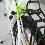 26inch 250W 36V Stadt-elektrisches Fahrrad