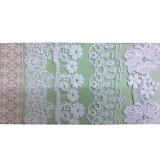 Lacet de /Embroidery de lacet d'ornement de vêtement de mode