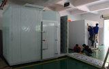 Promenade de polyuréthane dans la chambre d'essai concernant l'environnement de contrôle d'humidité de la température
