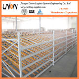 Hot Sale Warehouse Carton Flow Rack