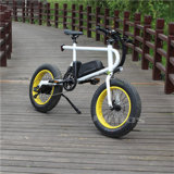 Vélo électrique grosse montagne de pneu de la fourche avant 20 de Suspention de '