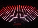 원격 제어를 가진 다채로운 LED 드는 공 거는 지구
