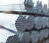 Tubo revestido del cinc/tubo de acero galvanizado rectangular 60X40m m