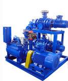 물 반지 진공 펌프가 Jzj2b1200-2.2에 의하여 뿌리박는다