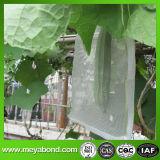 Le sac végétal de maille, concombre cultivent le sac