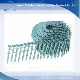 De Spijkers van het Dakwerk van het roestvrij staal met Plastic Wasmachine