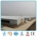 La casa de pollo comercial de la capa de la parrilla de la estructura de acero del diseño del edificio agrícola/vertió