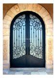 Внешняя декоративная дверь обеспеченностью с ковкой чугуна и стеклом