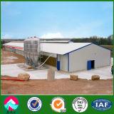 Granjas avícolas prefabricadas de la estructura de acero de China