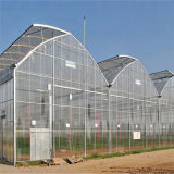 Fábrica 2016 que vende directo el invernadero multi más barato de la película del palmo con la temperatura de Contant y la función de la humedad y ensamblado fácilmente