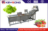 Lavadora china vegetal del vehículo de la burbuja del agua de la fecha del producto de limpieza de discos/de la azufaifa
