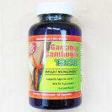 Guta por atacado magro mágica do Garcinia do produto da perda de peso (TAMPÕES MJ-GC60)