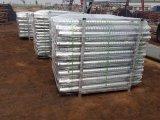 중국에 있는 태양 전지판 설치 제조자를 위한 지상 나사