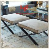 居間の腰掛け(RS161803)の記憶装置の腰掛けのバースツールのクッションの屋外の家具のホテルの腰掛けの店の腰掛けのレストランの家具のステンレス鋼の家具