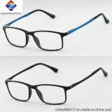 Heiße verkaufenbrille-optische Rahmen des entwurfs-Tr90