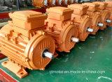 Motore a corrente alternata A tre fasi del blocco per grafici di alluminio (0.12 -15kW)