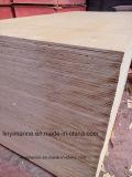 Madeira compensada natural do vidoeiro da madeira compensada 18mm da decoração para o mercado americano