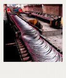 SAE1006/1008 fil d'acier laminé à chaud plus vendu Rod