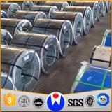 Bobina de aço galvanizada Prepainted do competidor