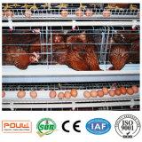 養鶏場の層の鶏のためのタイプの手動か自動電池ケージ