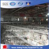 직접 공장 공급자 Broier 닭 감금소